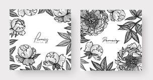 Графическая детальная рамка с цветками и листьями пиона 2 шаблона дизайна для верхнего слоя ваш текст, призыв к действию, печать, иллюстрация вектора