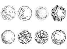 Графическая иллюстрация деревьев и кустарников на белой предпосылке Стоковое фото RF