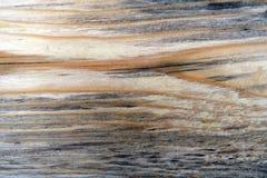 Графическая картина Стоковые Изображения RF