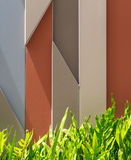 Графическая предпосылка с листьями папоротника Стоковая Фотография