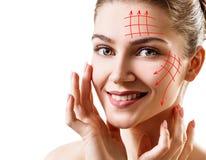 Графические линии показывая влияние ухода за лицом поднимаясь на коже Стоковые Фотографии RF