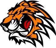 графический вектор тигра талисмана Стоковые Изображения