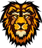 графический головной вектор талисмана льва изображения Стоковые Изображения RF
