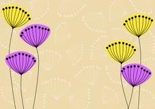 Графический одуванчик цветет карточка Стоковая Фотография