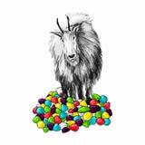 Графически рисовать козу среди карамельки Стоковое Изображение