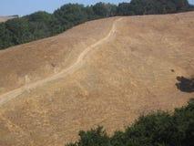 графство hiking тропки marin Стоковое Фото
