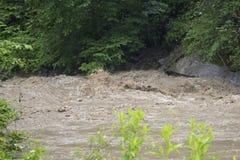 Графство Neamt прикарпатских гор Румынии - floodings в горе Tarcau - завихряясь река Tarcau стоковые изображения rf