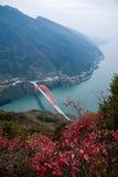 Графство Wenshan, Чунцин Wenfeng Forest Park обозревая мост и Wushan County Wushan Рекы Янцзы Стоковое фото RF