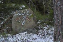 Граффити с ` жизни ` слова на камне в шведском лесе стоковые фото