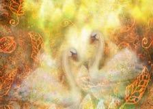 Грациозно лебеди в влюбленности плавая совместно, коллаж иллюстрации иллюстрация вектора