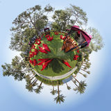 360 градусов Стоковые Фотографии RF