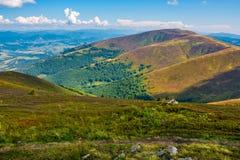 Гребень Borzhava в прикарпатских горах в августовском Стоковые Фотографии RF