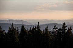 Гребни горы Орегона Стоковые Фотографии RF