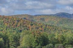 Гребни горы с цветами осени стоковые изображения