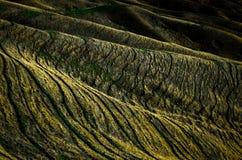 Гребни горы Стоковая Фотография