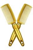 2 гребня золота изолированного на белизне Стоковые Фотографии RF