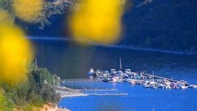 Гребля на озере сток-видео