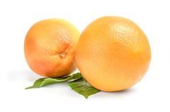 2 грейпфрута - изолированного на белой предпосылке Стоковые Фото