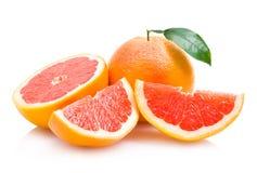 грейпфруты Стоковое Изображение
