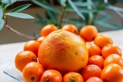 Грейпфрут и tangerines на стеклянной пластинке Стоковое фото RF