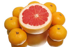 Грейпфрут и tangerines Стоковое фото RF