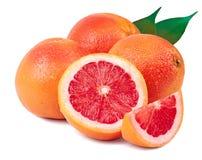 Грейпфрут на белой предпосылке Стоковая Фотография RF