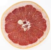 Грейпфрут на белизне Стоковые Изображения