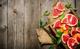Грейпфрут отрезка с листьями Стоковые Изображения