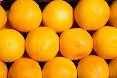 грейпфрут предпосылки Стоковое Изображение