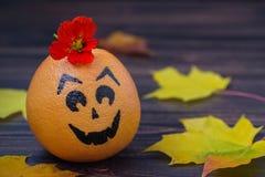 Грейпфрут при нарисованная сторона Стоковые Фотографии RF