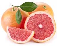 Грейпфрут с ломтиками. Стоковая Фотография RF