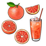 Грейпфрут целого, половинных, квартальных и стекло сока с льдом иллюстрация штока