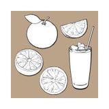 Грейпфрут целого, половинных, квартальных и стекло сока с льдом бесплатная иллюстрация
