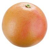 Грейпфрут. Стоковое Фото