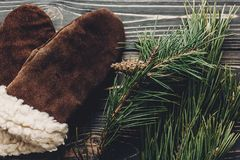 Грейте уютные перчатки на деревенской предпосылке с ветвями зеленого цвета ели к Стоковая Фотография RF