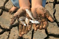 греть руки мертвых рыб гловальный Стоковое Фото