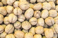 Грецкие орехи в картине раковины Стоковое Изображение