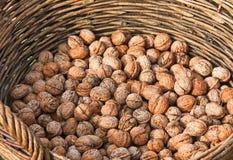 Грецкие орехи в корзине стоковое изображение