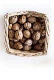 Грецкие орехи в корзине стоковые изображения rf