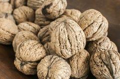 Грецкие орехи в крупном плане раковины Стоковое Изображение