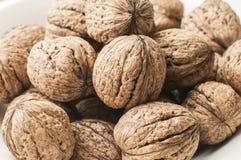 Грецкие орехи в крупном плане раковины Стоковые Фотографии RF