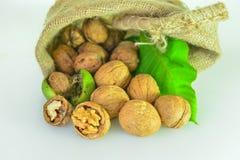 Грецкие орехи в мешке Стоковое Изображение