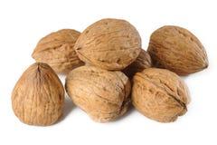 Грецкие орехи в раковинах на белизне Стоковое Изображение RF