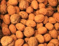 Грецкие орехи в раковинах Стоковая Фотография