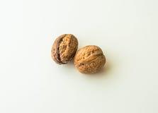 Грецкие орехи в раковине на белой предпосылке Стоковые Фото