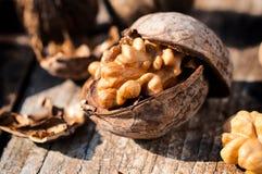 Грецкие орехи в раковине Стоковые Изображения RF