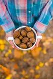 Грецкие орехи в руках девушек Стоковое Фото