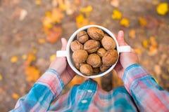 Грецкие орехи в руках девушек Стоковая Фотография RF