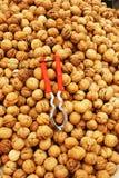 грецкие орехи грецкого ореха зажима Стоковое Фото