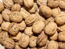 грецкие орехи группы стоковое изображение rf